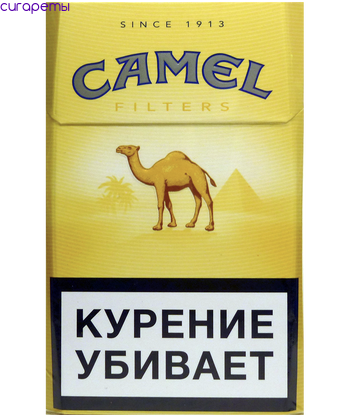 Купить сигареты camel в петербурге купить сигареты в новосибирске в розницу